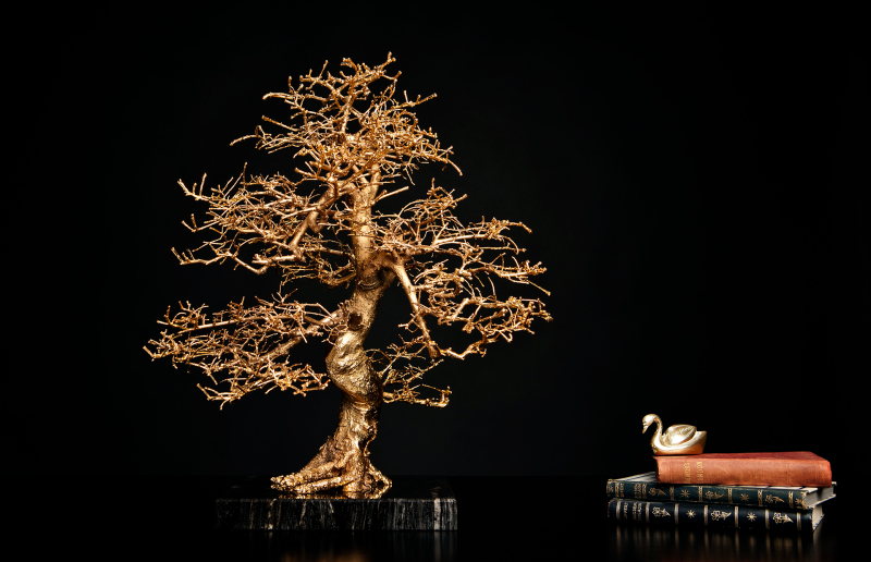 <p>In 2013, as co-founder, I was able to bring L`Arbre Switzerland AG on the road. <br />The company was basically focused on the development, production, and of course, the sales of exclusive accessories, such as the L`Arbre d`Or, a – in a special electroplating process – gold-plated bonsai.<br />If you are interested in the product,... please, let me know.</p>