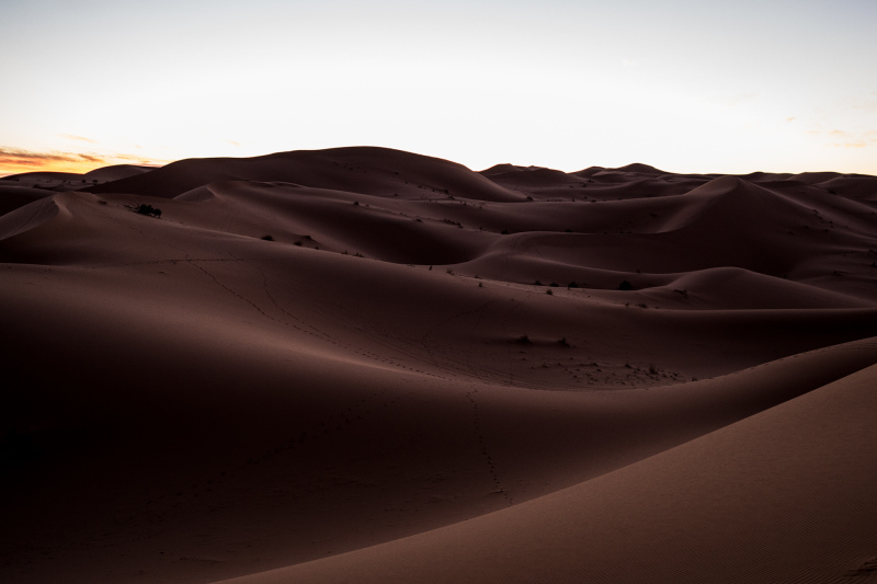 <p>The Sahara Desert at the border region of Algeria and Marocco.</p>